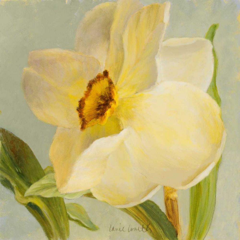 konfigurieren des Kunstdrucks in Wunschgröße Daffodil Sky II von Loreth, Lanie
