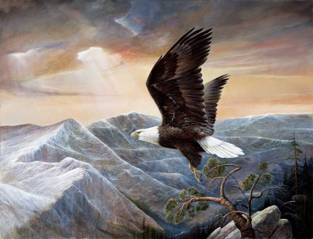 konfigurieren des Kunstdrucks in Wunschgröße Eagles Lair von Manning, Ruane