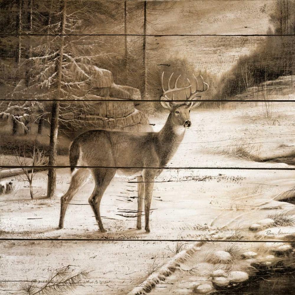 konfigurieren des Kunstdrucks in Wunschgröße Shadows of the Forest von Manning, Ruane