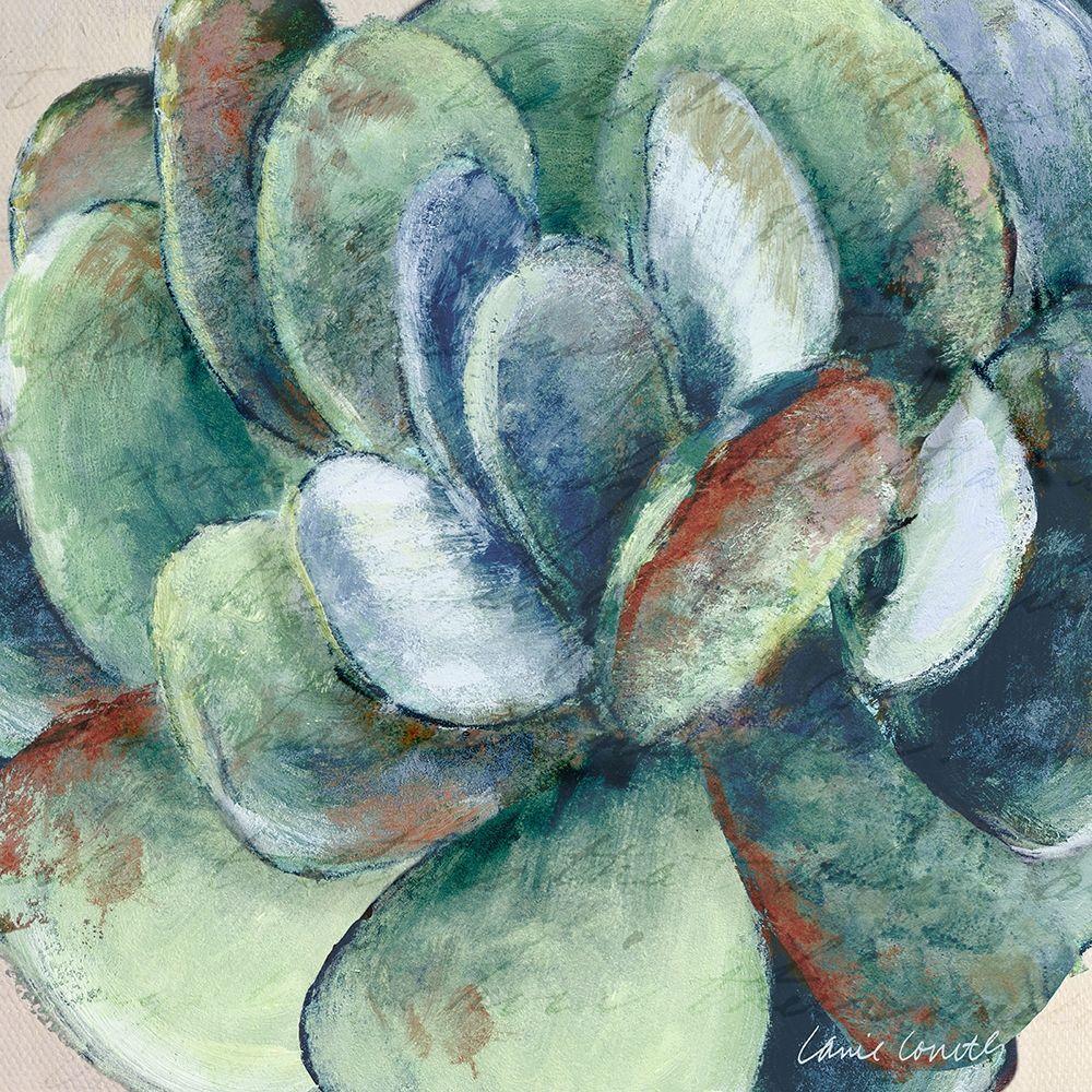 konfigurieren des Kunstdrucks in Wunschgröße Wonderful Succulent von Loreth, Lanie