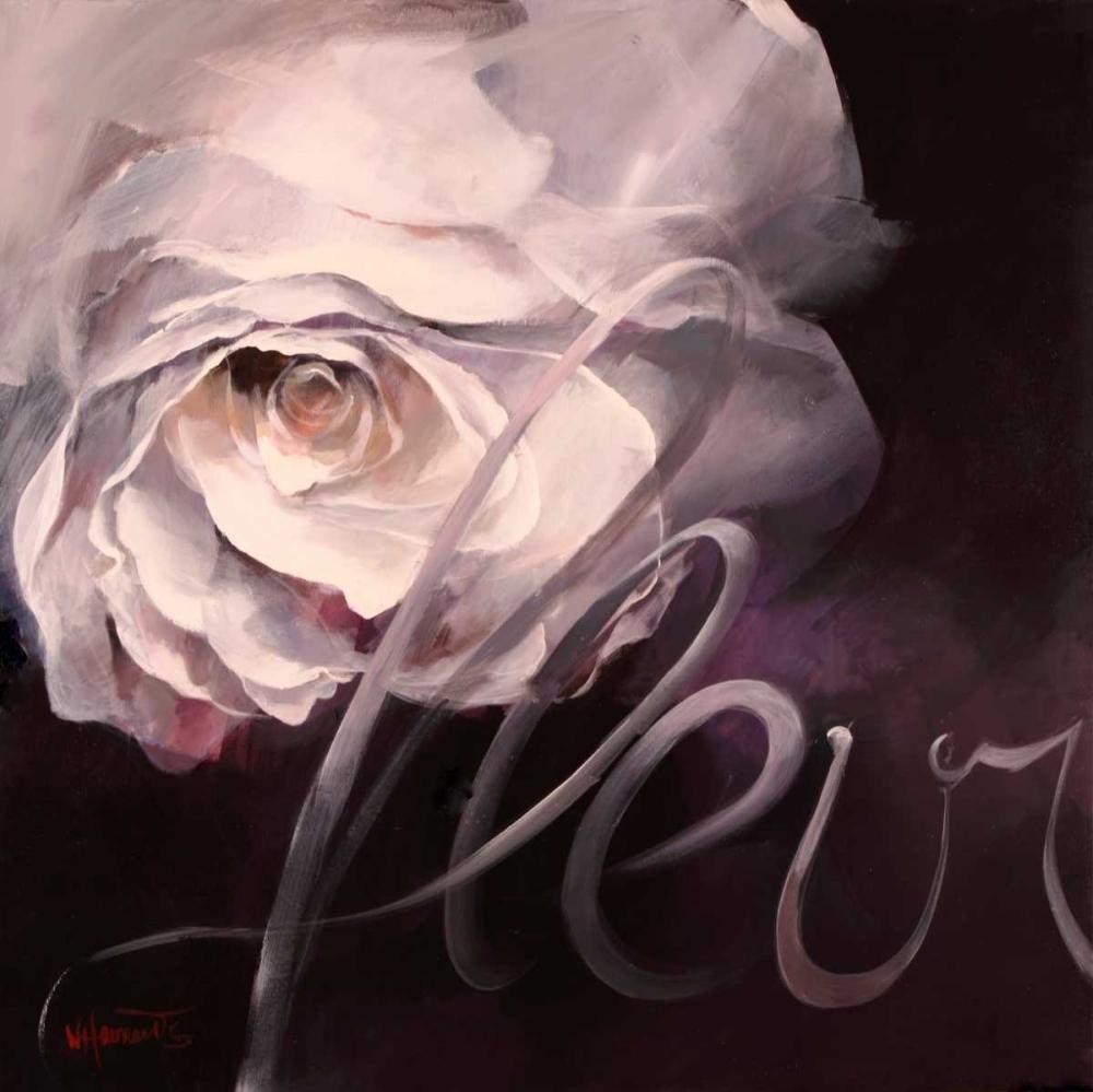 Fleur I von Haenraets, Willem <br> max. 48 x 48cm <br> Preis: ab 10€