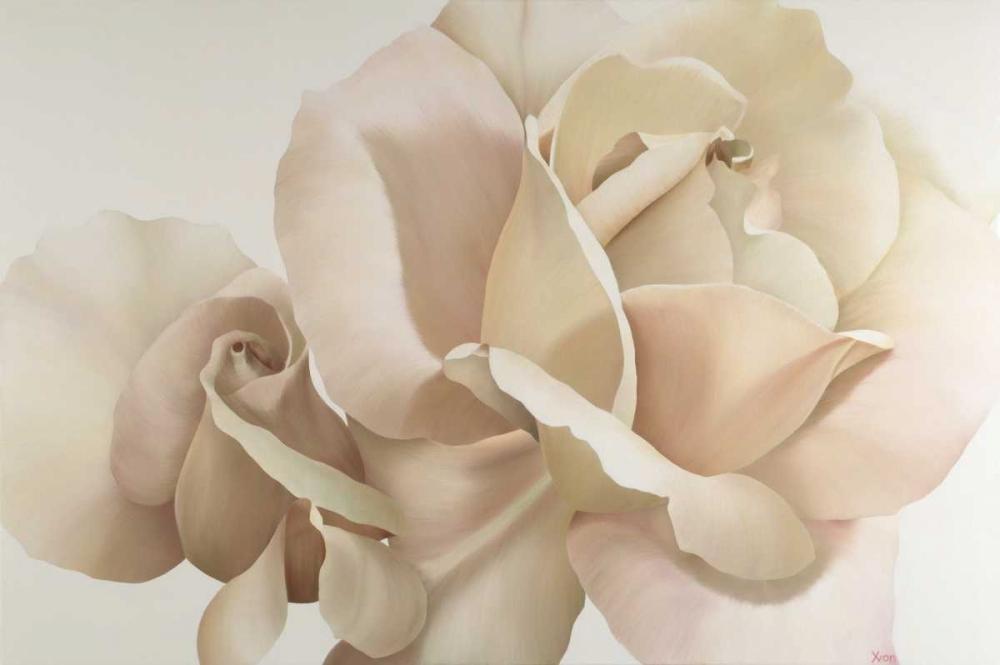 konfigurieren des Kunstdrucks in Wunschgröße White Rose von Poelstra-Holzhaus, Yvonne