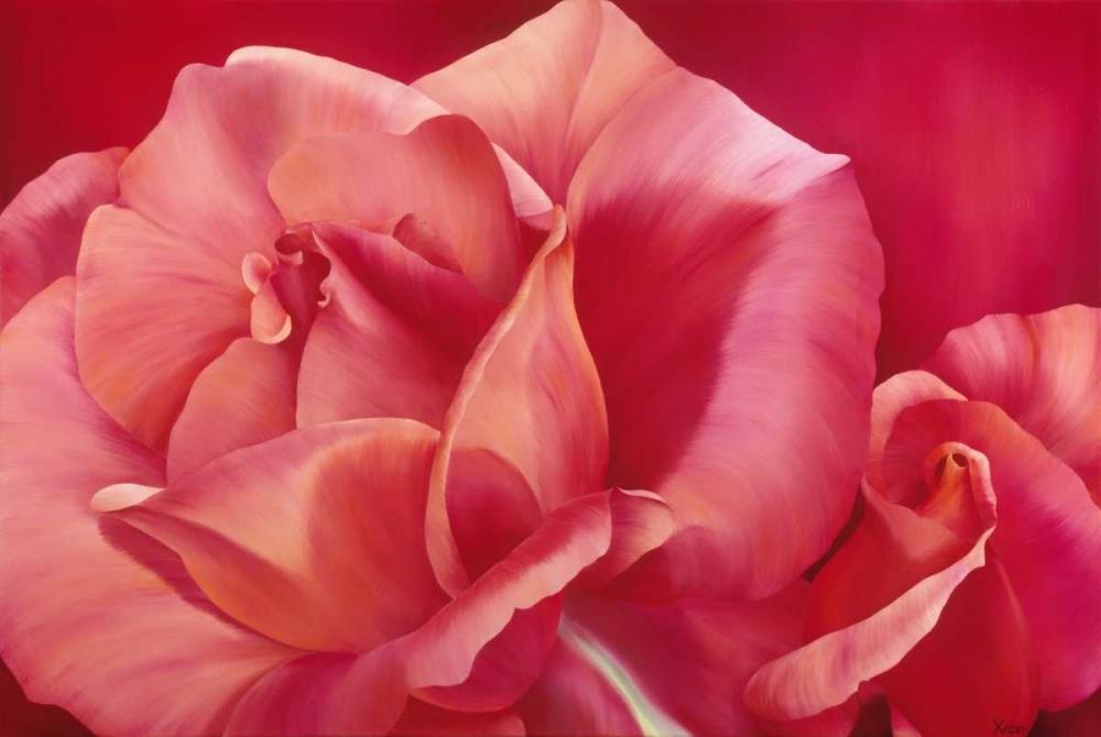konfigurieren des Kunstdrucks in Wunschgröße Pink Rose I von Poelstra-Holzhaus, Yvonne