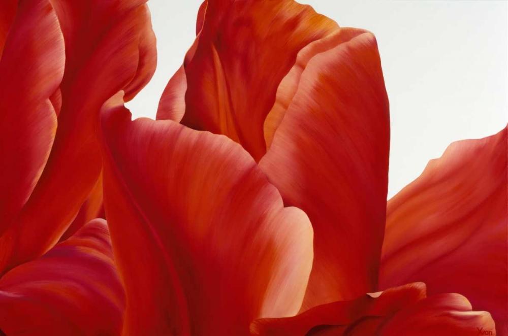 konfigurieren des Kunstdrucks in Wunschgröße Party Tulip I von Poelstra-Holzhaus, Yvonne