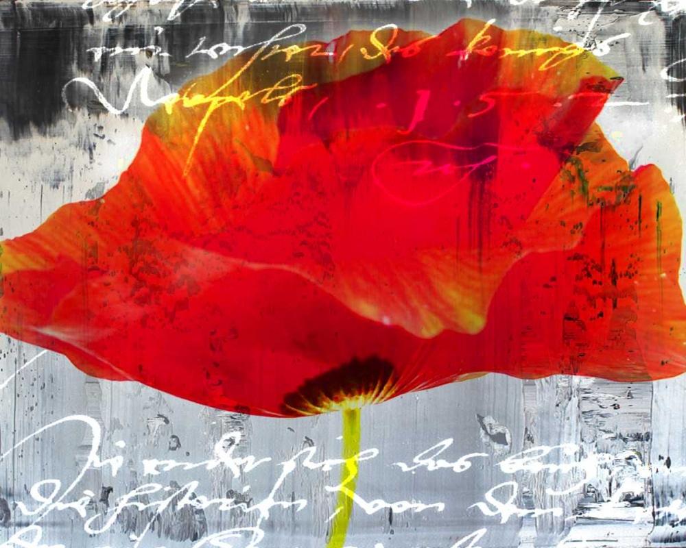 konfigurieren des Kunstdrucks in Wunschgröße Poppy Story II von Baker, Micha