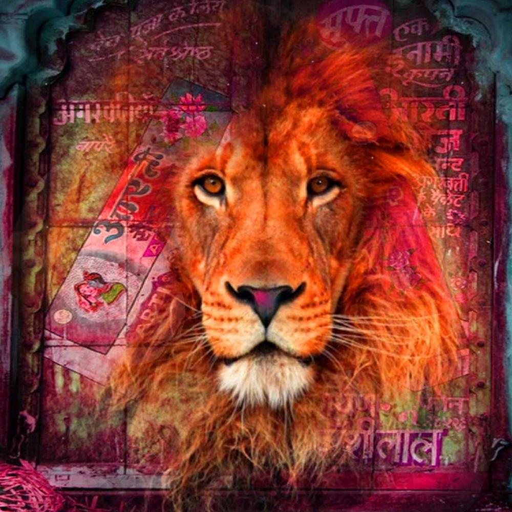 konfigurieren des Kunstdrucks in Wunschgröße Lion I von de Haas, Mascha