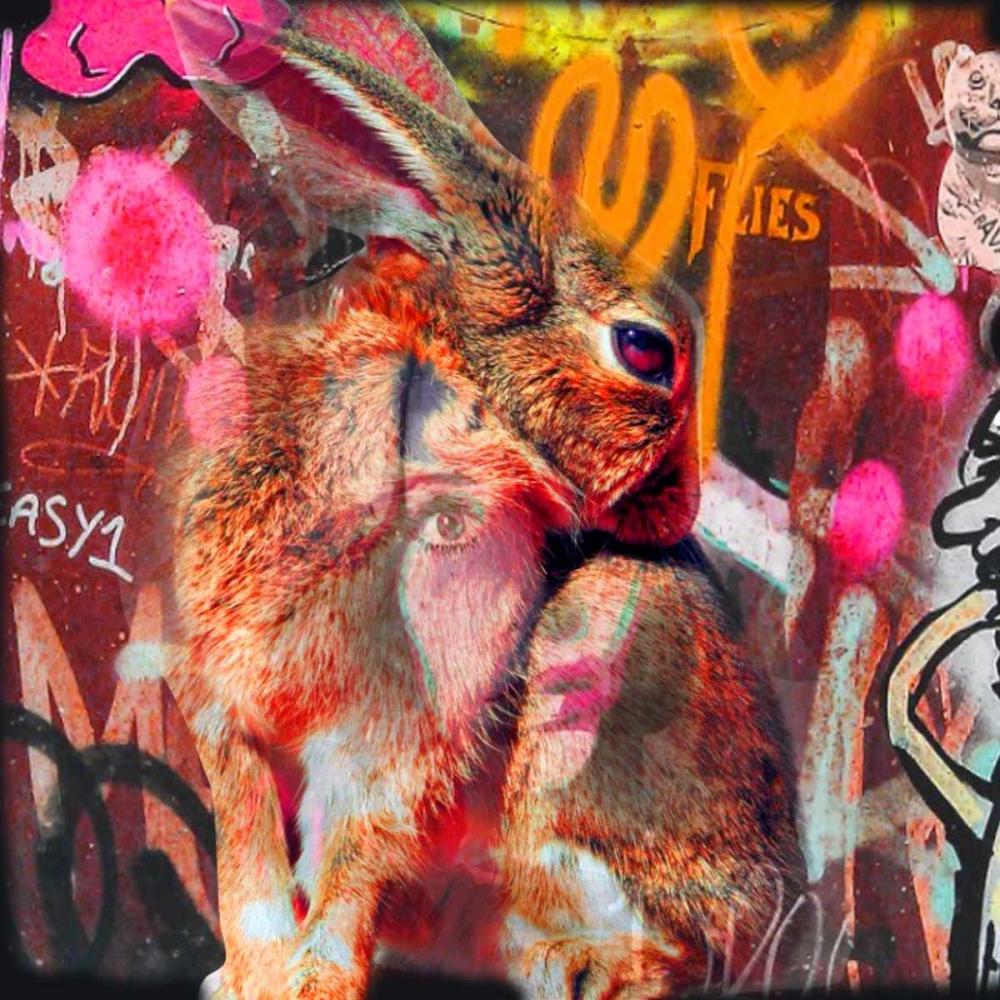 konfigurieren des Kunstdrucks in Wunschgröße Bunny von de Haas, Mascha