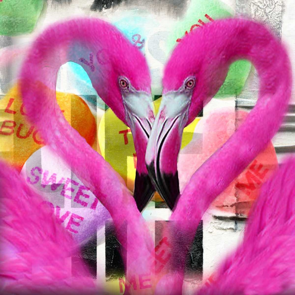 konfigurieren des Kunstdrucks in Wunschgröße Flamingo von de Haas, Mascha