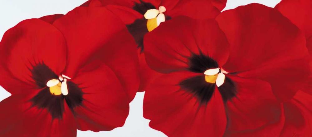 konfigurieren des Kunstdrucks in Wunschgröße Red I - pansies von Poelstra-Holzhaus, Yvonne