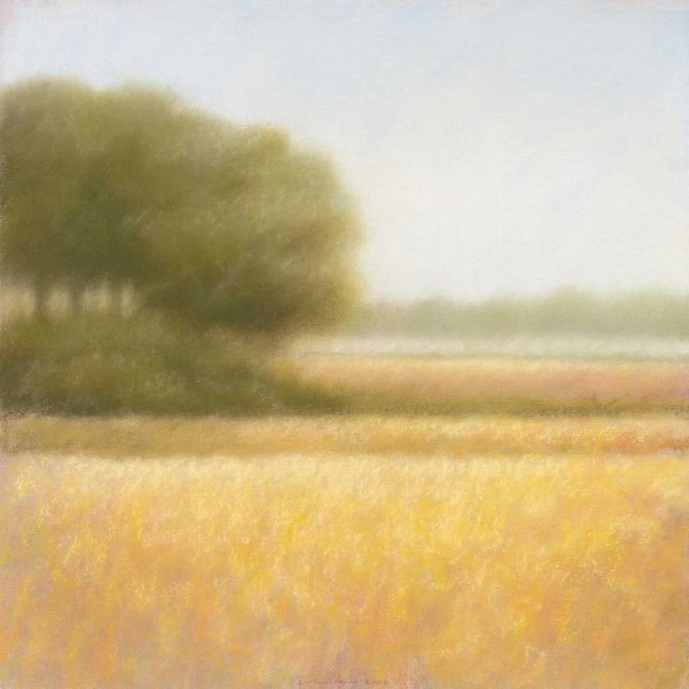 konfigurieren des Kunstdrucks in Wunschgröße Wheat field von Dolieslager, Hans