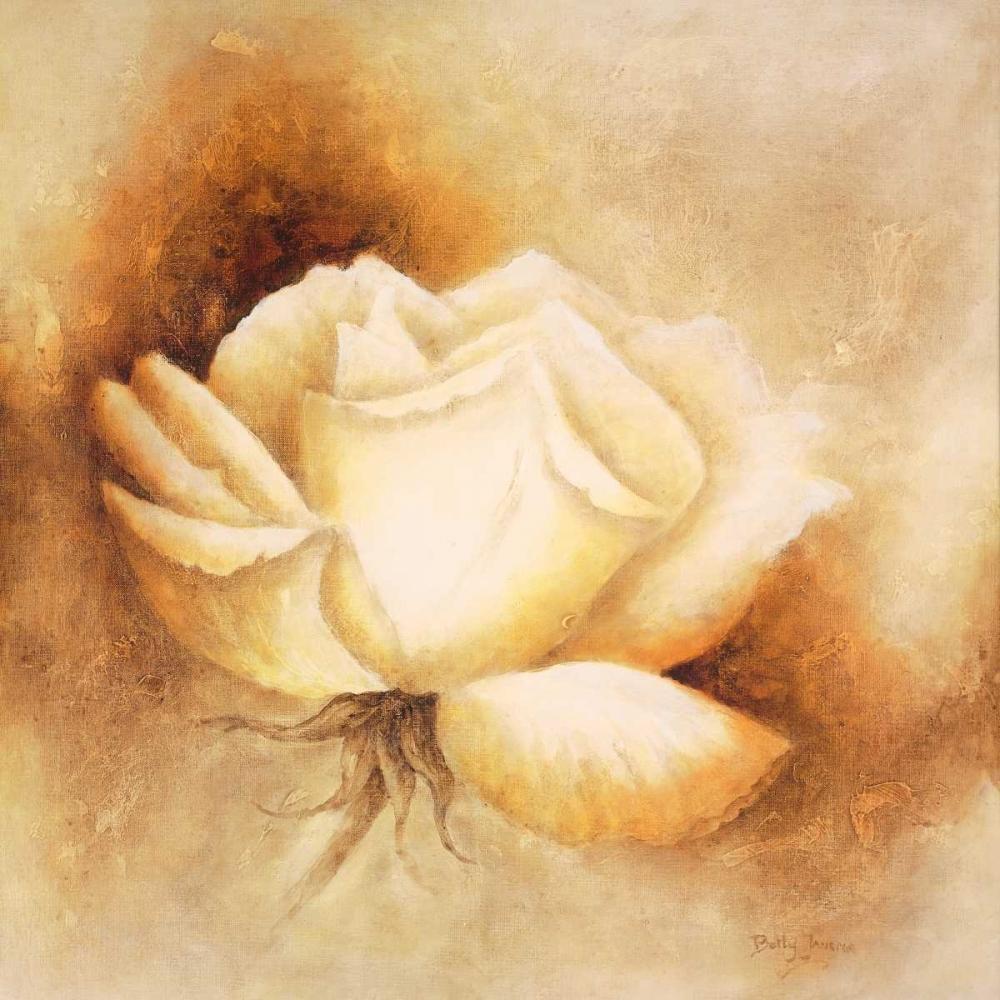 konfigurieren des Kunstdrucks in Wunschgröße White rose I von Jansma, Betty