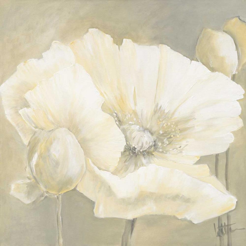konfigurieren des Kunstdrucks in Wunschgröße Poppy in white II von Roseboom, Jettie