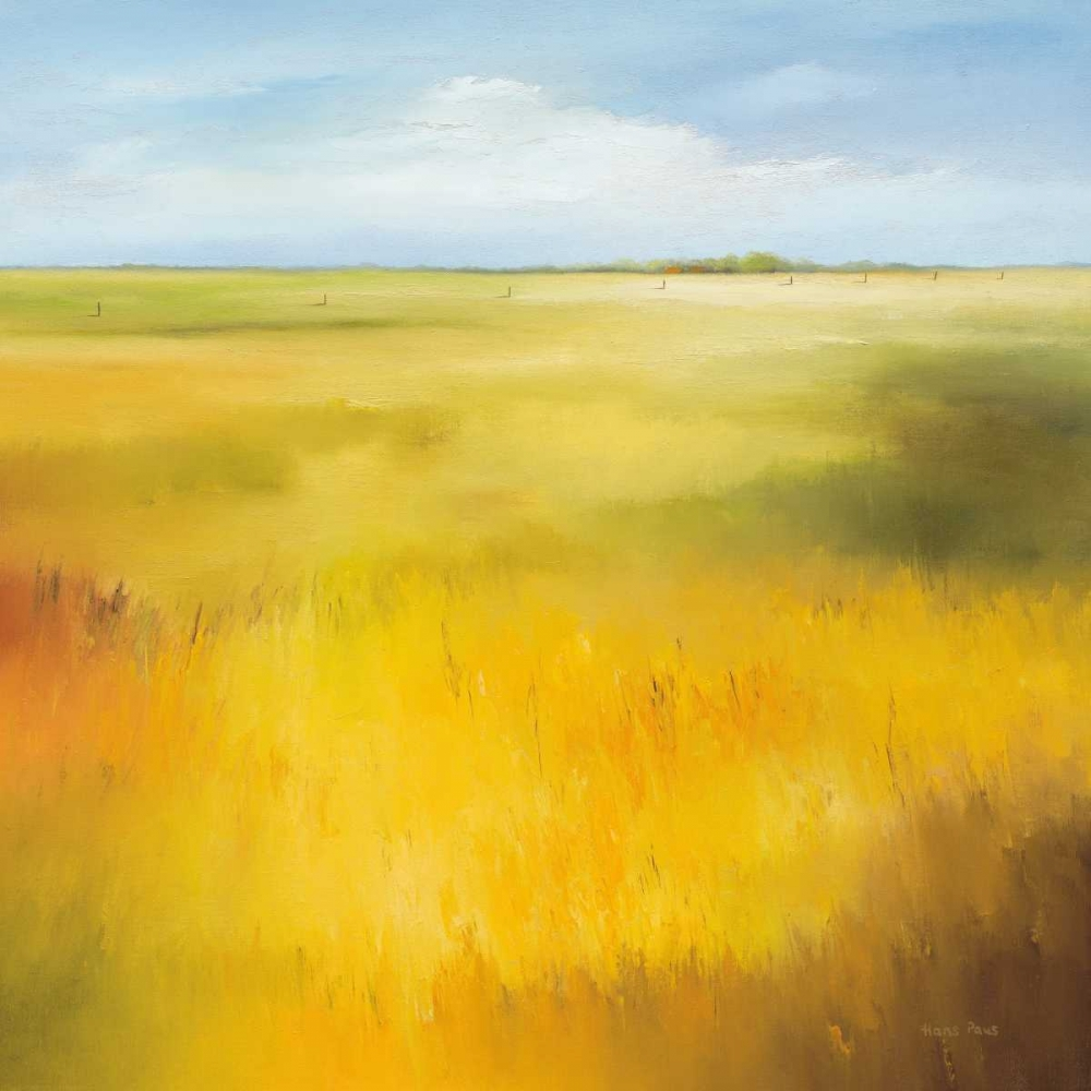 Yellow field I von Paus, Hans <br> max. 135 x 135cm <br> Preis: ab 10€