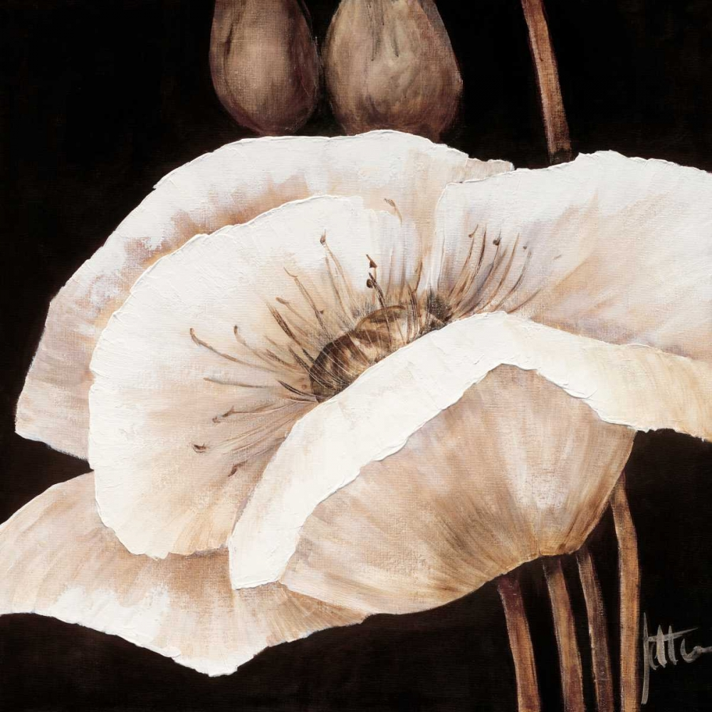 konfigurieren des Kunstdrucks in Wunschgröße Amazing poppies I von Roseboom, Jettie