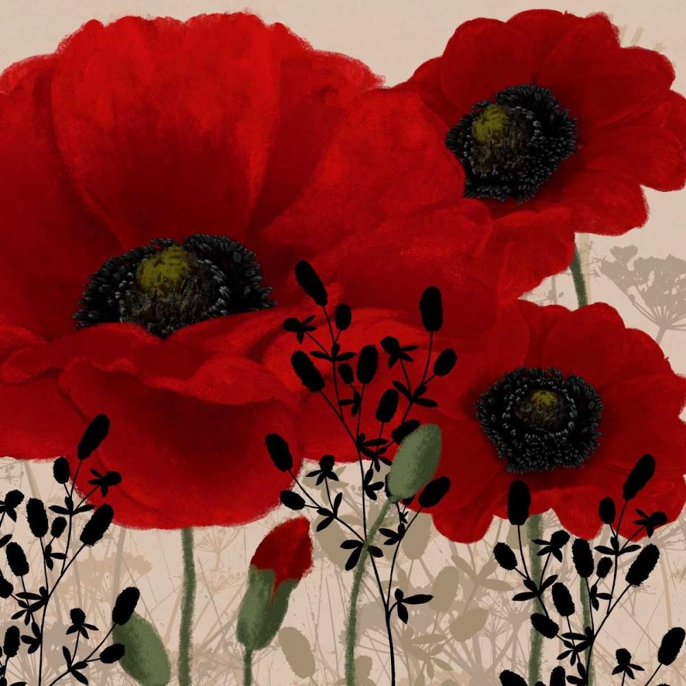 konfigurieren des Kunstdrucks in Wunschgröße Red poppies II von Linda, Wood