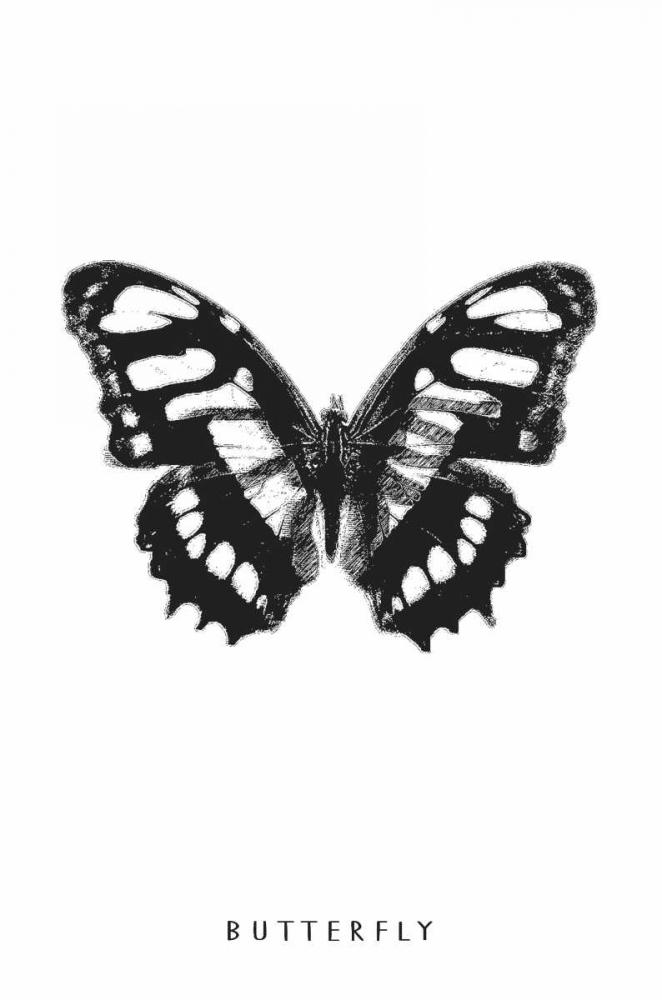 konfigurieren des Kunstdrucks in Wunschgröße Butterfly von Waltz, Anne