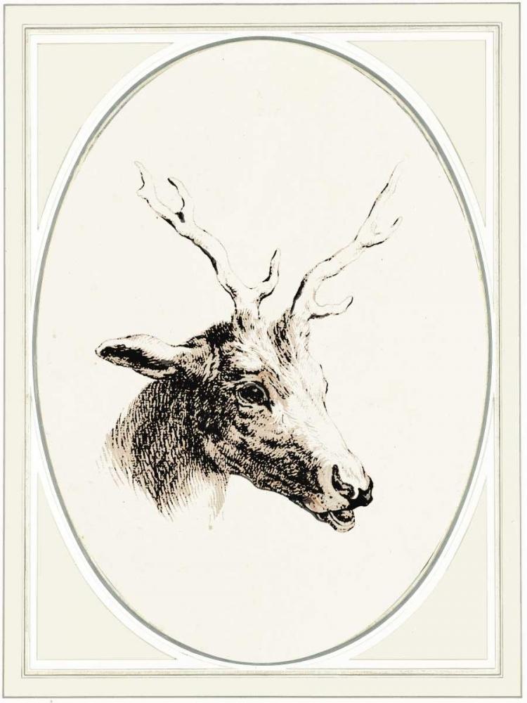 Deer I von Waltz, Anne <br> max. 58 x 79cm <br> Preis: ab 10€