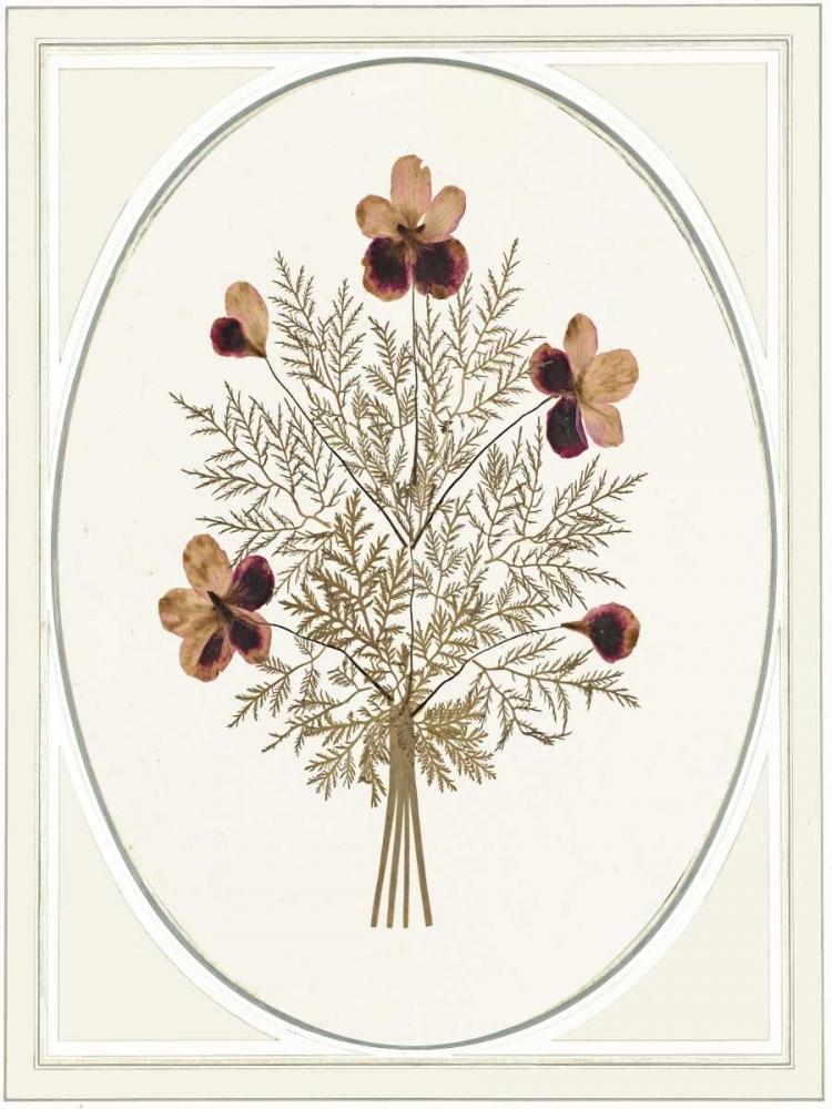 Gardenio II von Waltz, Anne <br> max. 58 x 79cm <br> Preis: ab 10€