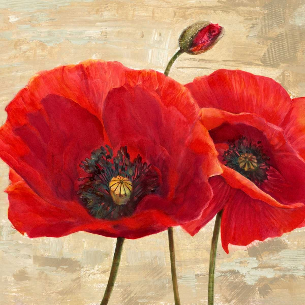 konfigurieren des Kunstdrucks in Wunschgröße Red Poppies (detail II) von Ann, Cynthia