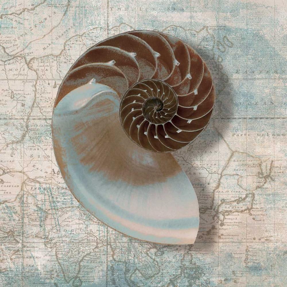 Nautilus von Broome, Ted <br> max. 135 x 135cm <br> Preis: ab 10€