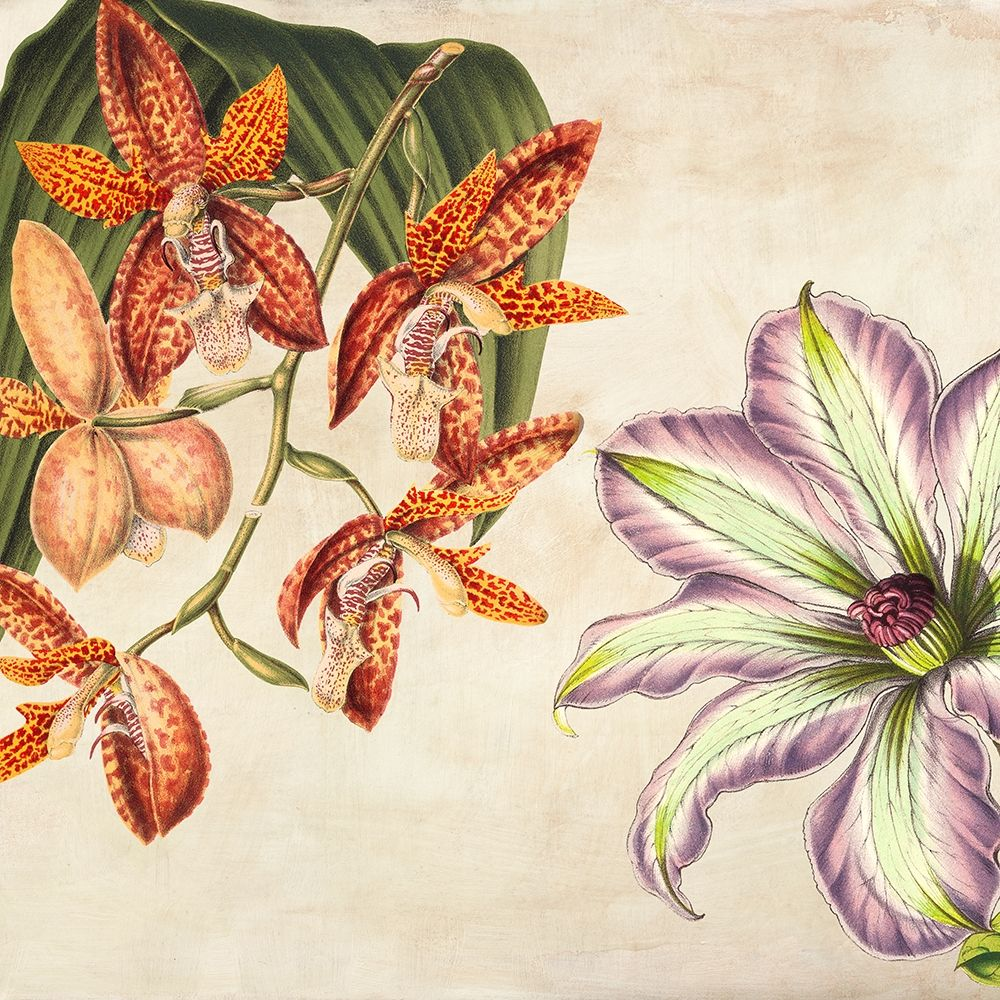 konfigurieren des Kunstdrucks in Wunschgröße Panneau Botanique V von Dellal, Remy