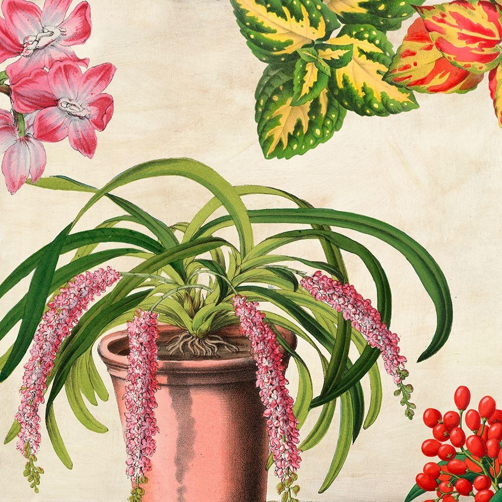 konfigurieren des Kunstdrucks in Wunschgröße Panneau Botanique VII von Dellal, Remy