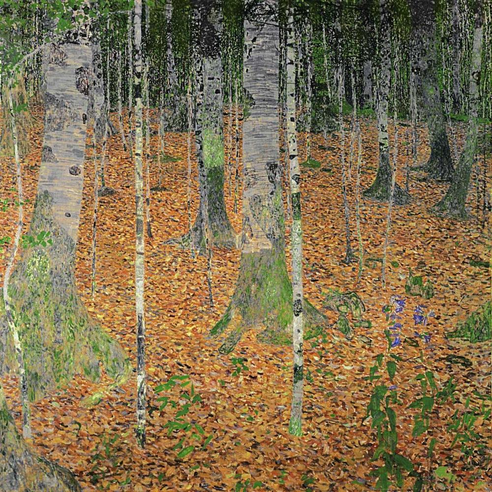 konfigurieren des Kunstdrucks in Wunschgröße The Birch Wood von Klimt, Gustav