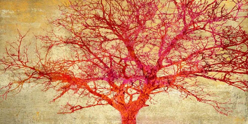 konfigurieren des Kunstdrucks in Wunschgröße Coral Tree von Aprile, Alessio