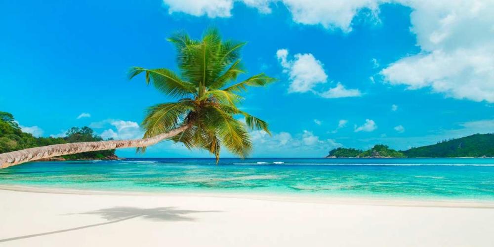 konfigurieren des Kunstdrucks in Wunschgröße Tropical beach, Seychelles von Anonymous