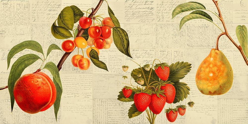 konfigurieren des Kunstdrucks in Wunschgröße Fruits de saison von Dellal, Remy