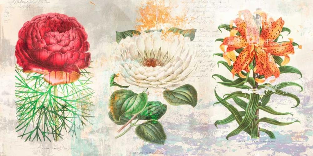 konfigurieren des Kunstdrucks in Wunschgröße Hortus Botanicus 2.0 von Chestier, Eric