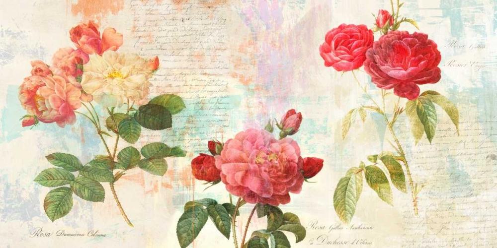 konfigurieren des Kunstdrucks in Wunschgröße Redoutes Roses 2.0 von Chestier, Eric