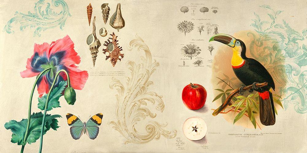 konfigurieren des Kunstdrucks in Wunschgröße Cabinet of Curiosities II von Joannoo