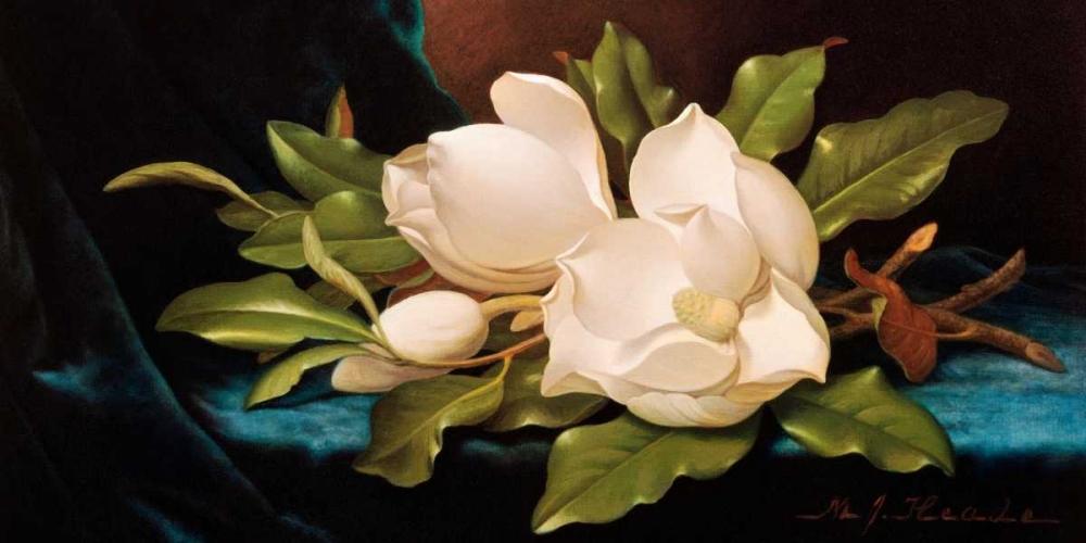 konfigurieren des Kunstdrucks in Wunschgröße Giant Magnolias on Blue Cloth von Heade, Martin Johnson