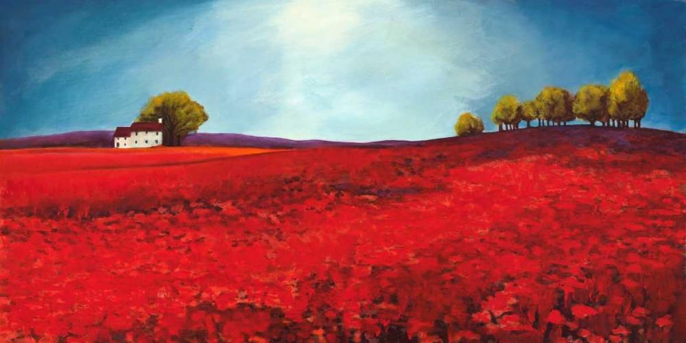 konfigurieren des Kunstdrucks in Wunschgröße Field of poppies von Bloom, Philip