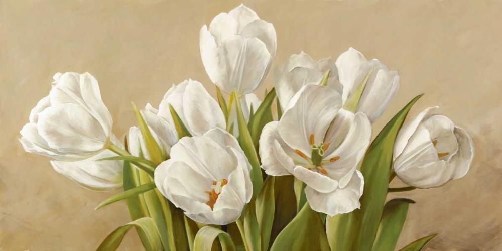 konfigurieren des Kunstdrucks in Wunschgröße Tulipani bianchi von Biffi, Serena