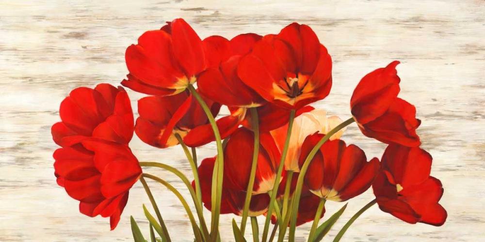 konfigurieren des Kunstdrucks in Wunschgröße French Tulips von Biffi, Serena