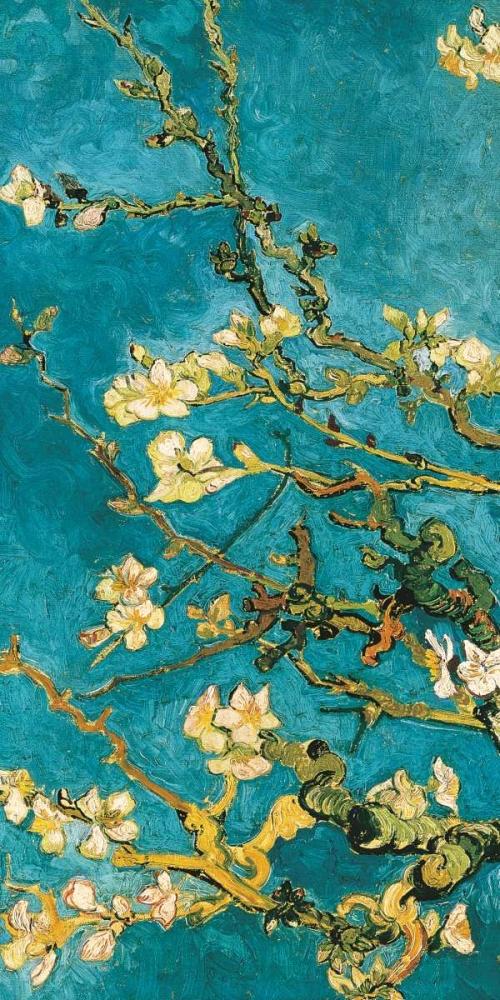 konfigurieren des Kunstdrucks in Wunschgröße Mandorlo in fiore I von Van Gogh, Vincent