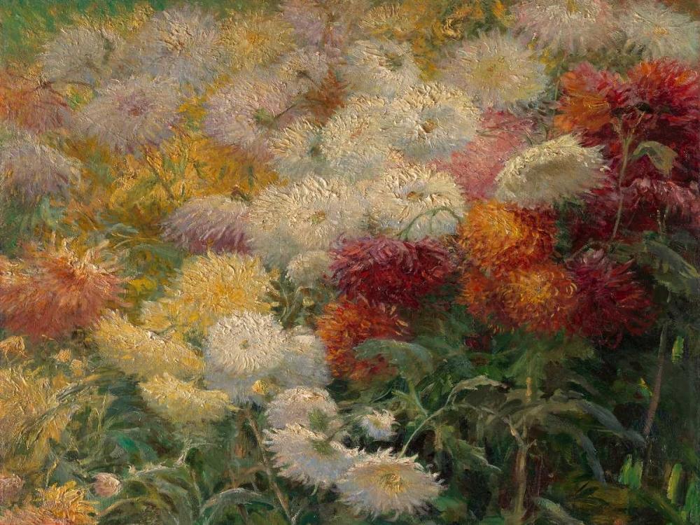 konfigurieren des Kunstdrucks in Wunschgröße Chrysanthemums in the Garden at Petit-Gennevilliers von Caillebotte, Gustave