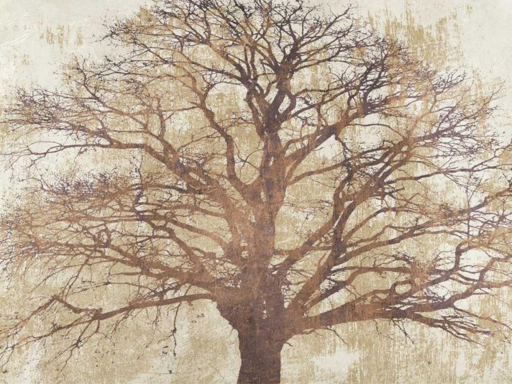 konfigurieren des Kunstdrucks in Wunschgröße Sacred Oak von Aprile, Alessio