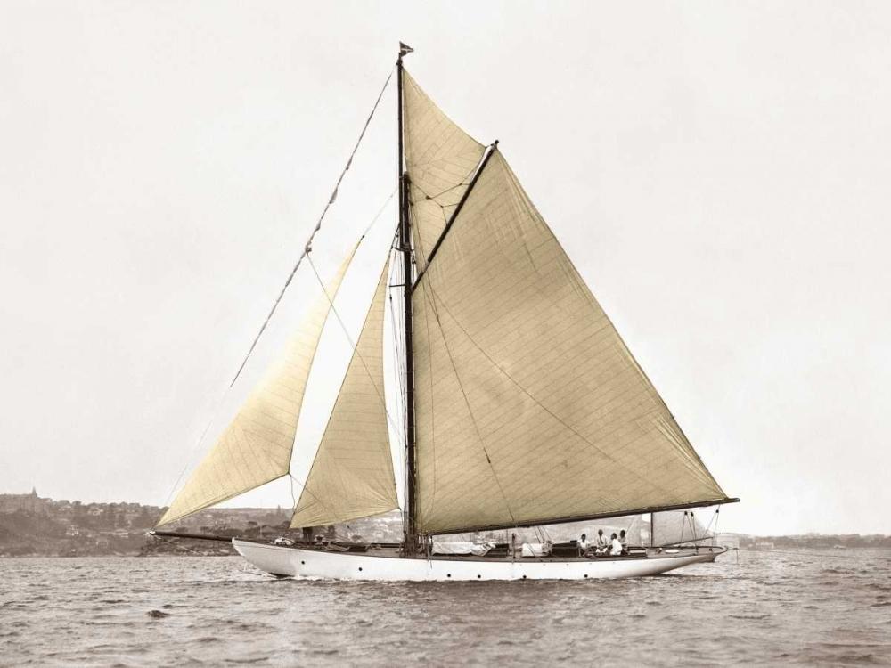 konfigurieren des Kunstdrucks in Wunschgröße Yacht on Sydney Harbour von Anonymous