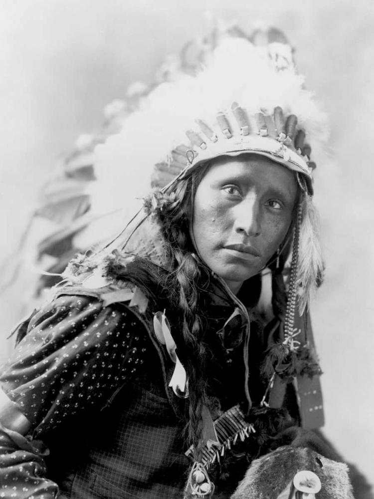konfigurieren des Kunstdrucks in Wunschgröße Indian wearing White War Bonnet- 1900 von Anonymous