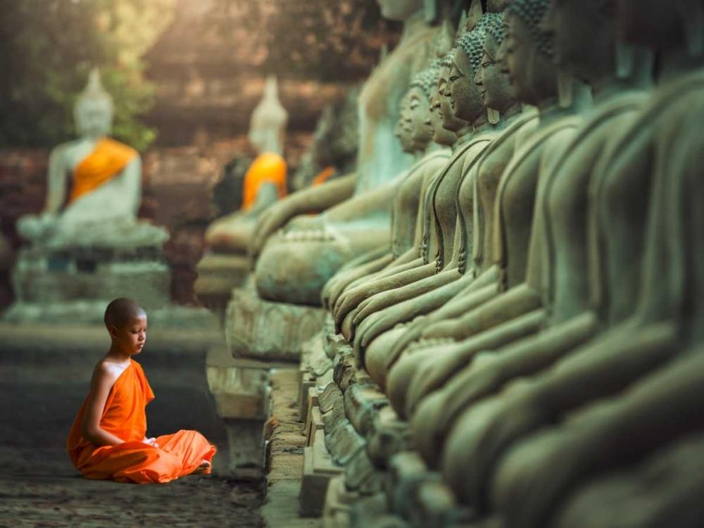konfigurieren des Kunstdrucks in Wunschgröße Young Buddhist Monk praying, Thailand von Pangea Images