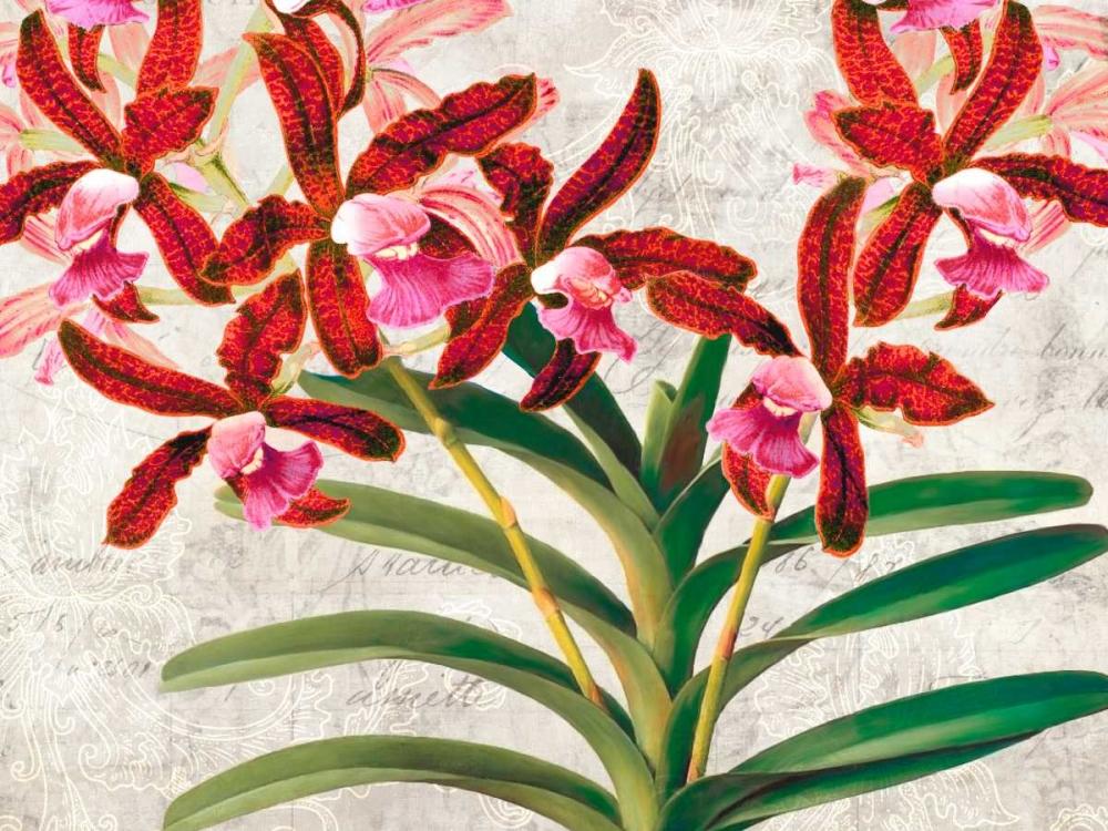 konfigurieren des Kunstdrucks in Wunschgröße Botanique Moderne I von Dellal, Remy