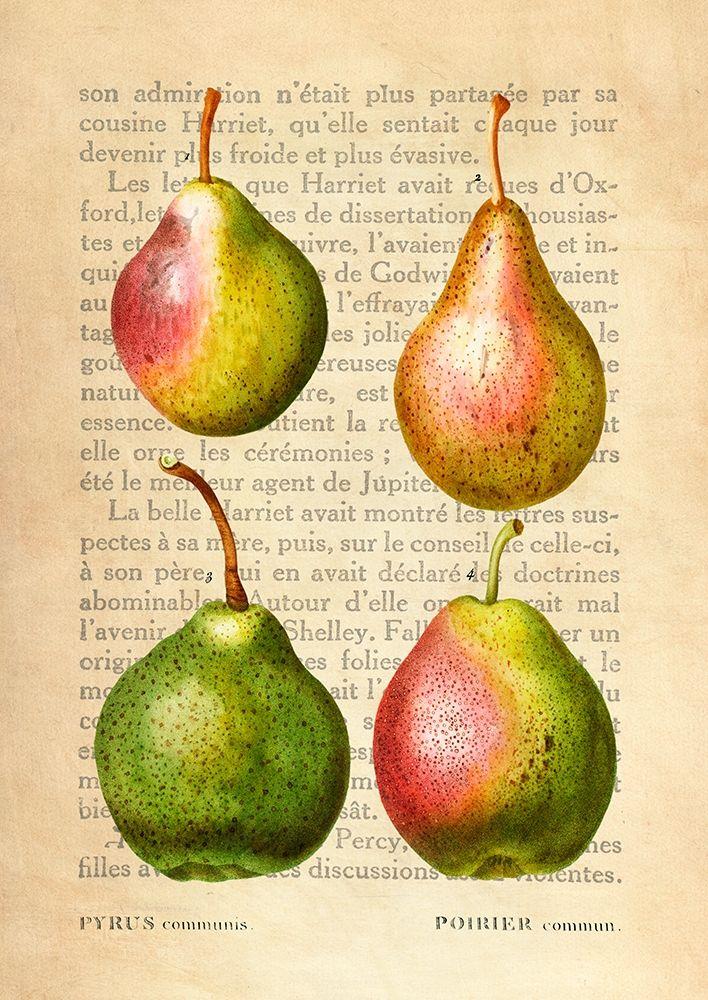 konfigurieren des Kunstdrucks in Wunschgröße Pears- After Redoute von Dellal, Remy