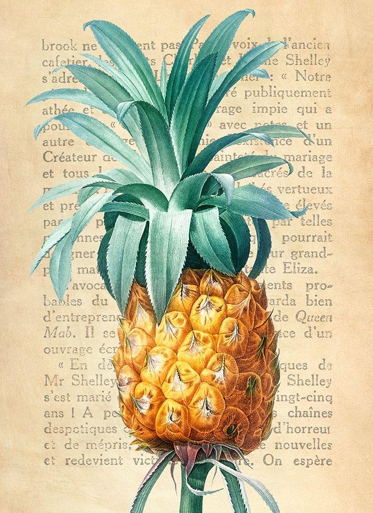 konfigurieren des Kunstdrucks in Wunschgröße Pineapple- After Redoute von Dellal, Remy