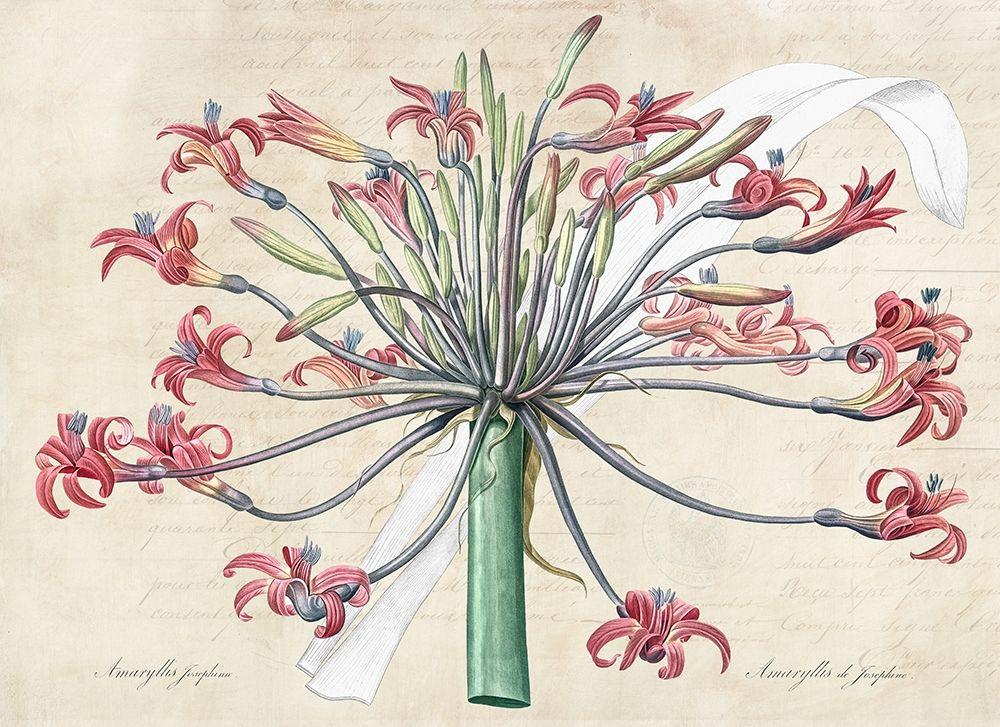 konfigurieren des Kunstdrucks in Wunschgröße Josephines lily- After Redoute von Dellal, Remy