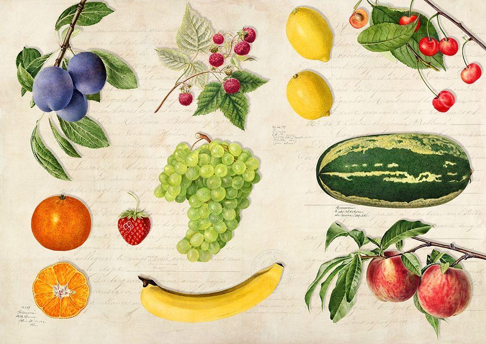konfigurieren des Kunstdrucks in Wunschgröße Fruits du Monde von Dellal, Remy