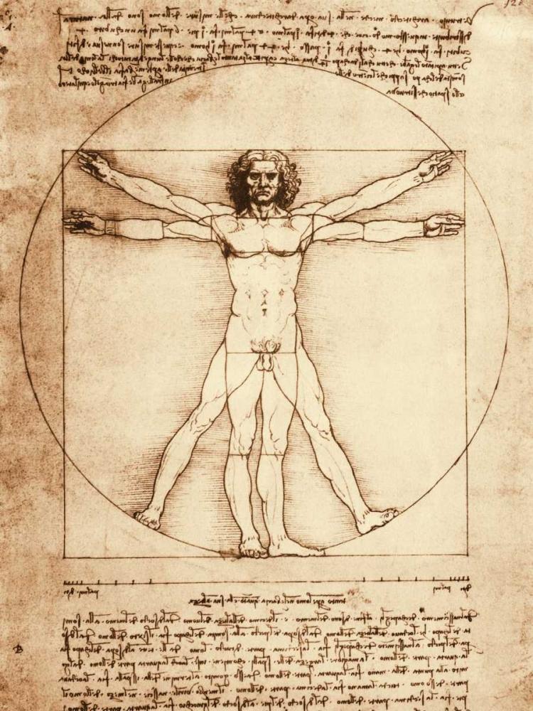 konfigurieren des Kunstdrucks in Wunschgröße Vitruvian Man von Da Vinci, Leonardo