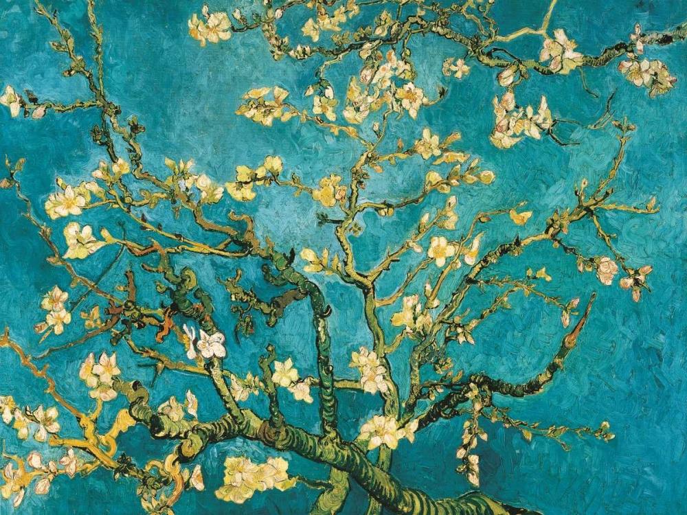konfigurieren des Kunstdrucks in Wunschgröße Mandorlo in fiore von Van Gogh, Vincent